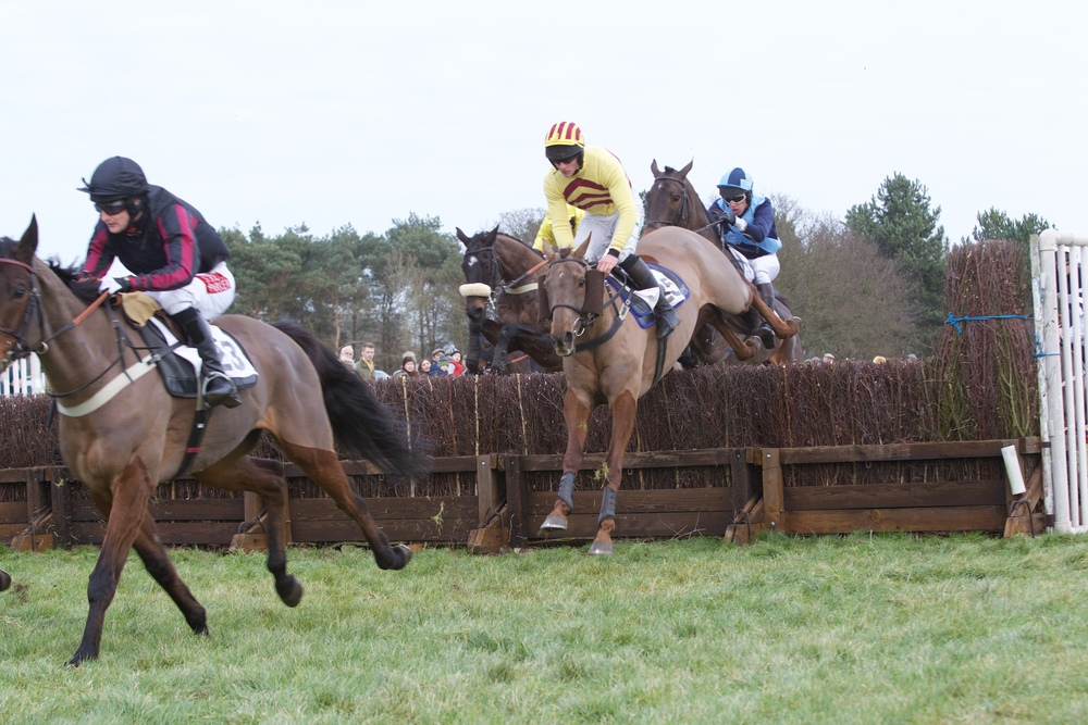 PPORA Club Race Div 2 - The Sliotar (yellow and brown) chasing Themilanhorse