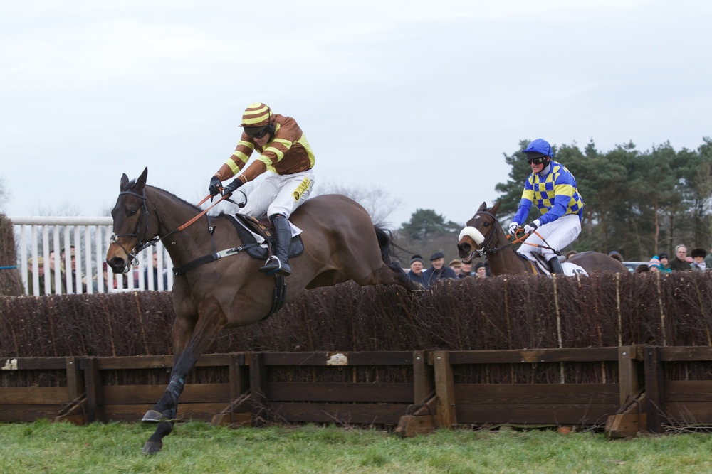 My Alfie leads Venlo at the last in the first Maiden