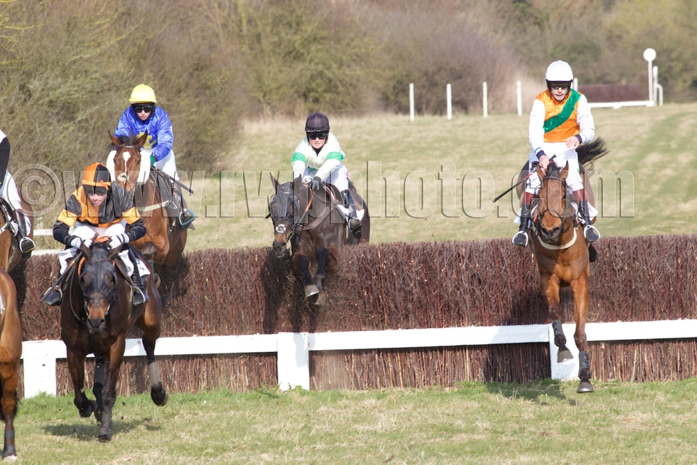 L to r: Rock of Braga, Saddlers Blaze, Emergency Cover and Evening Echo