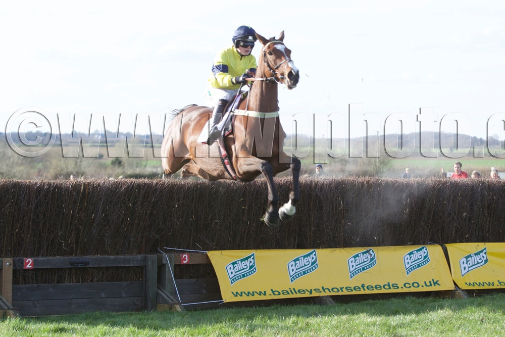 Star of Massini returns from a year-long absence to win the Hunt Race