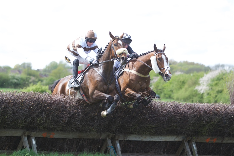 Uber Alles (left) jumps past Desertmore Valley at the last