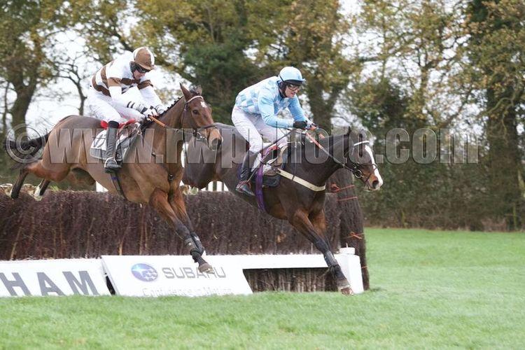 Daidaidai (right) jumps alongside Rupert Wells