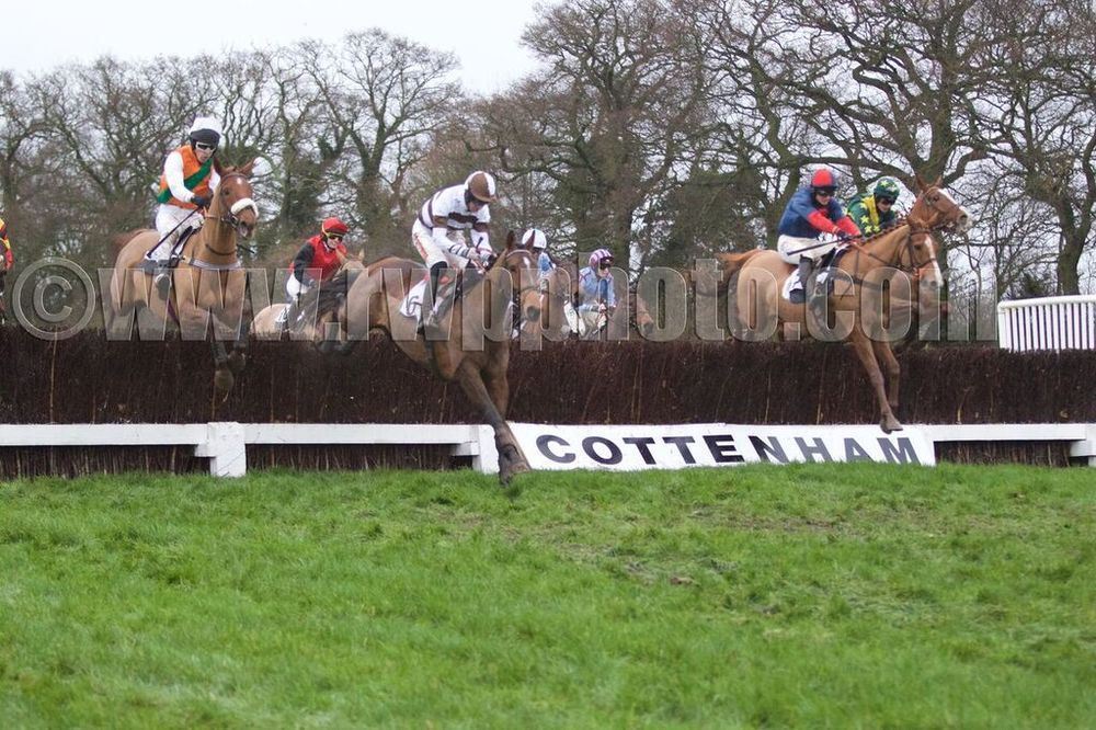 Galros Lady (white and brown hoops) jumps alongside Gustave Mahler (right) and Theconartist (left)