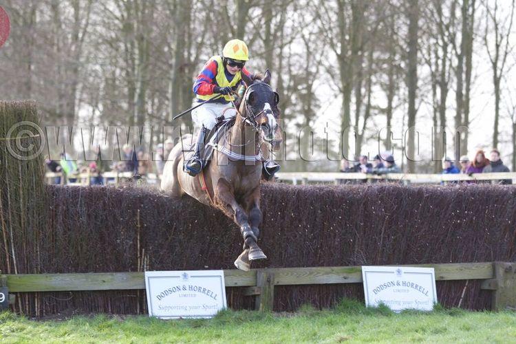 Berties Dream measures an obstacle