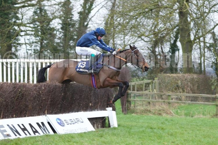 Nightscape and Charlie Buckle pop over the final fence