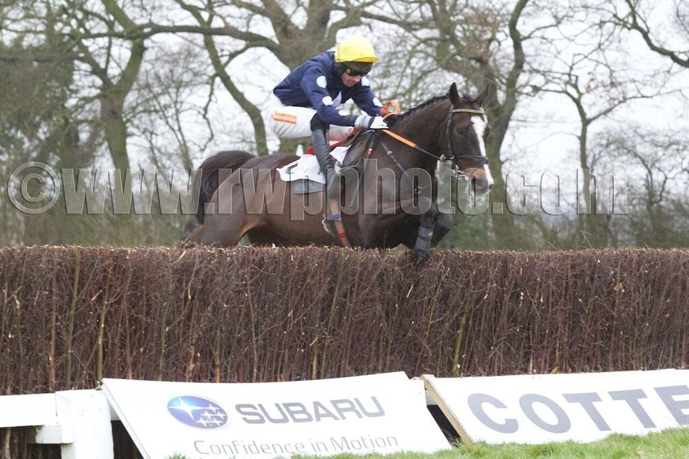 Play The Ace (Dickie Collinson) seals victory with a good jump at the last