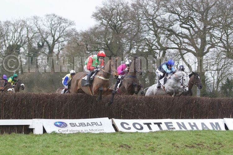 Bingo Star (red sleeves, Johnny Bailey) jumps alongside the grey, Celtic Silver (Gina Andrews)