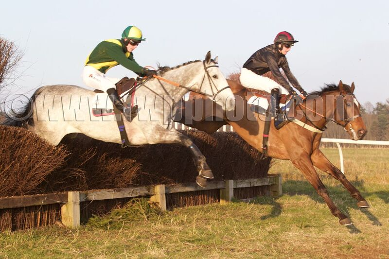 Honourable Henry half a length in front of Cresta One