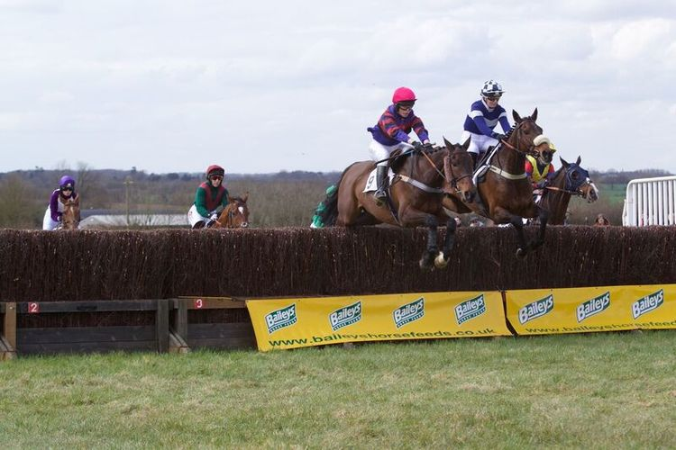 Little Legend and Bavard Court jump as one