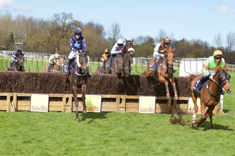 Counting Stars (centre, sheepskin noseband) in the thick of the action