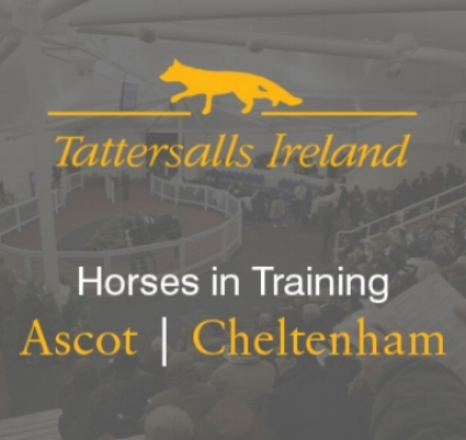Sponsored by Tattersalls Ireland