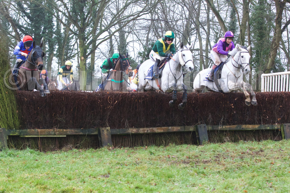The two greys Forrardon Xmoor (right) and Cresta One force the early pace alongside Brianogue (blinkered, left)