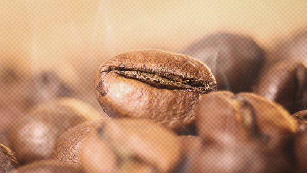 Pursue your coffee passion