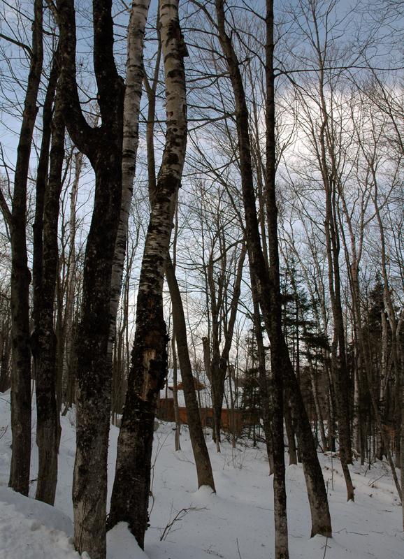 Vermont_064.jpg