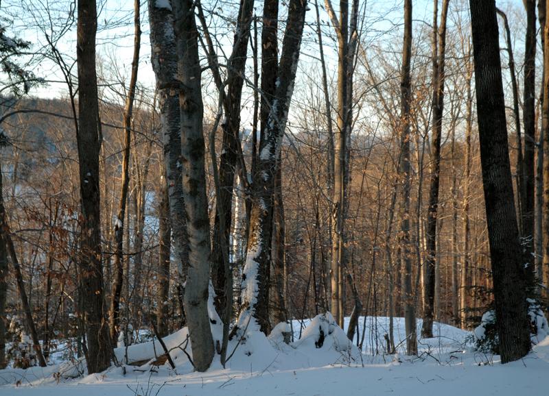 Vermont_012.jpg