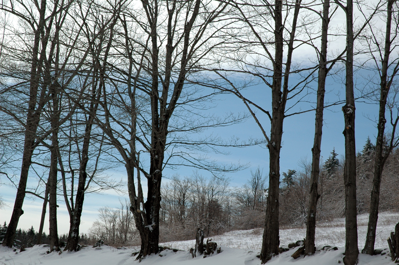 Vermont_043.jpg