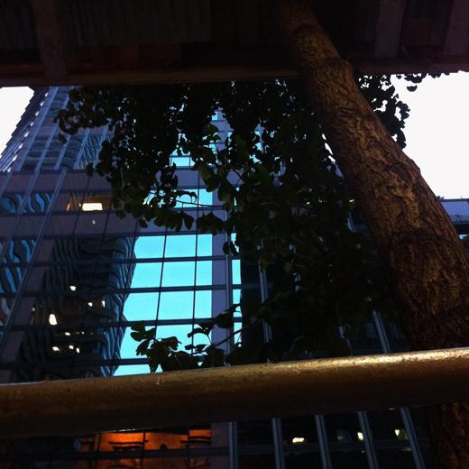 scaff-city-38.jpg