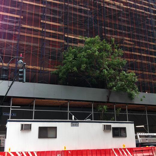 scaffolding city, shot 115
