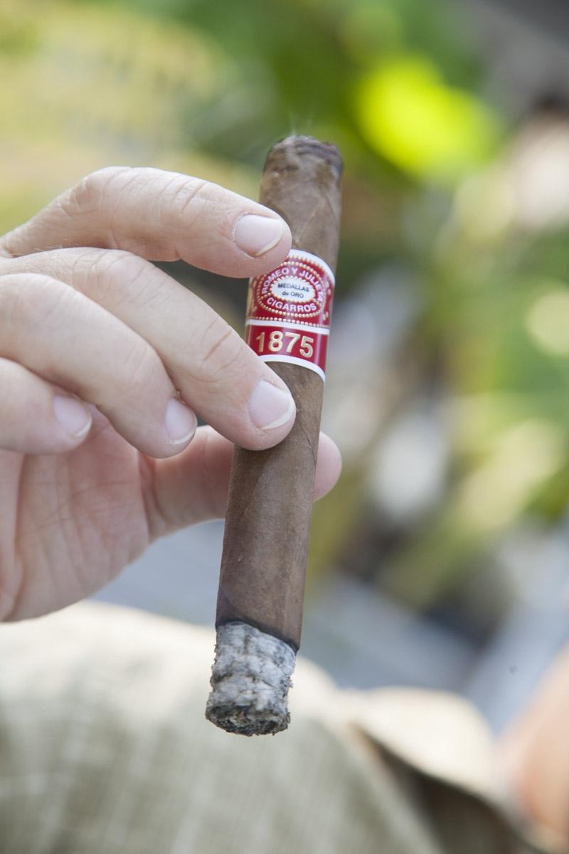 Cigar 11b.JPG