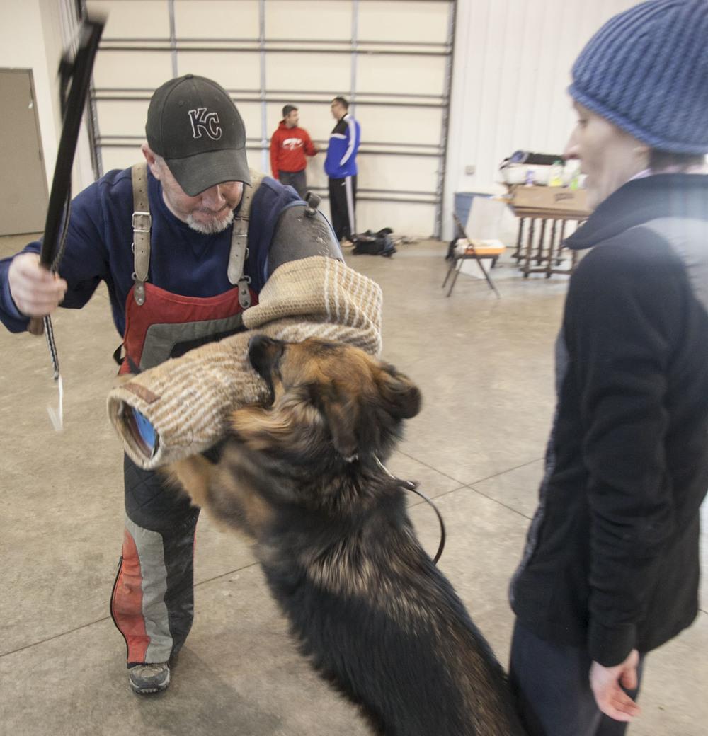 Job Dog Training213.jpg