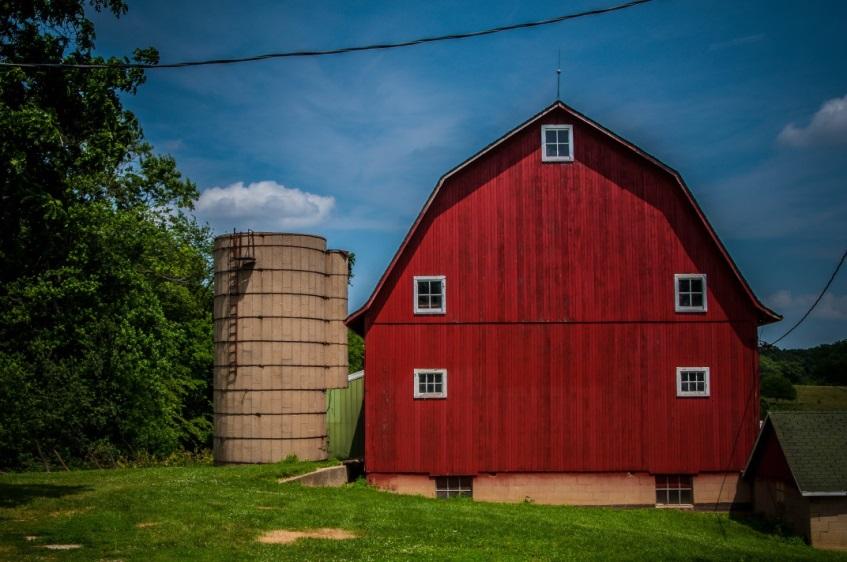 Marvin Forssander-Baird: Farm