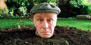 Q36 What creature appeared in the opening and closing credits of classic BBC1 sitcom One Foot In The Grave? A Giant Tortoise