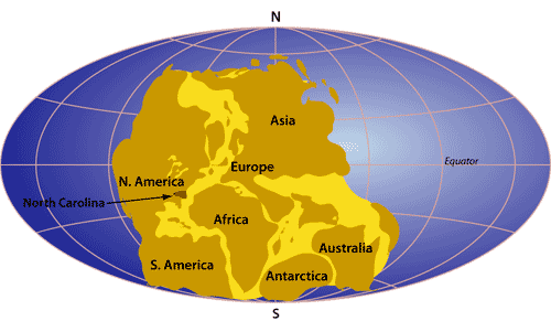 Q4 Which continent was Brazil adjacent to when it was part of the supercontinent Pangea millions of years ago? Africa