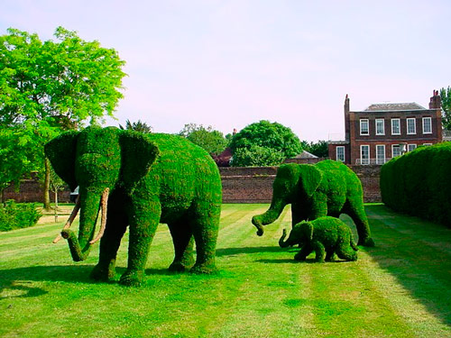Q5 What name is given to the art of shaping hedges and trees into shapes? Topiary