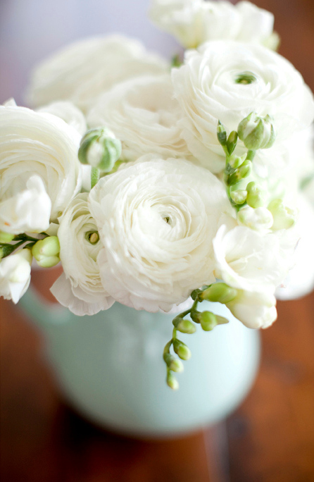 robust white peony roses as many as can fit in the soft blue round jug vase are a delicate but bold statement
