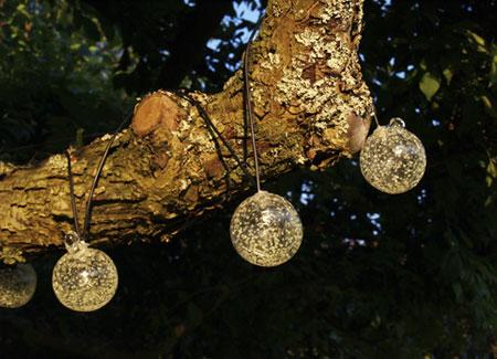 solar powered string lights on tree.jpg