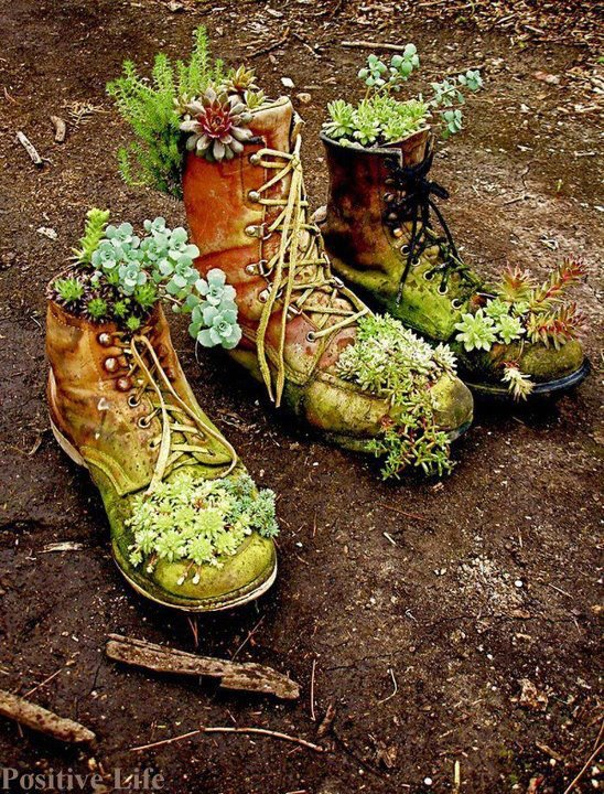If the shoe doesn't fit, repurpose it - The Old Moss Woman