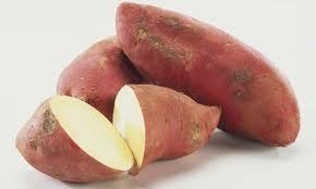 White fleshed sweet potato