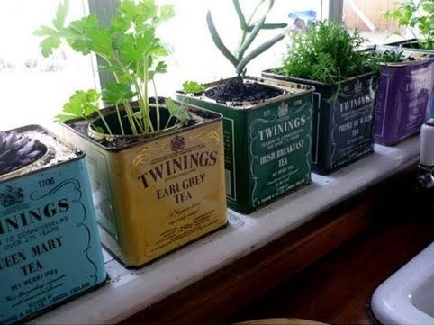 Tea tins make great pots for your indoor kitchen herb garden and fit perfectly on any sunny window ledge.