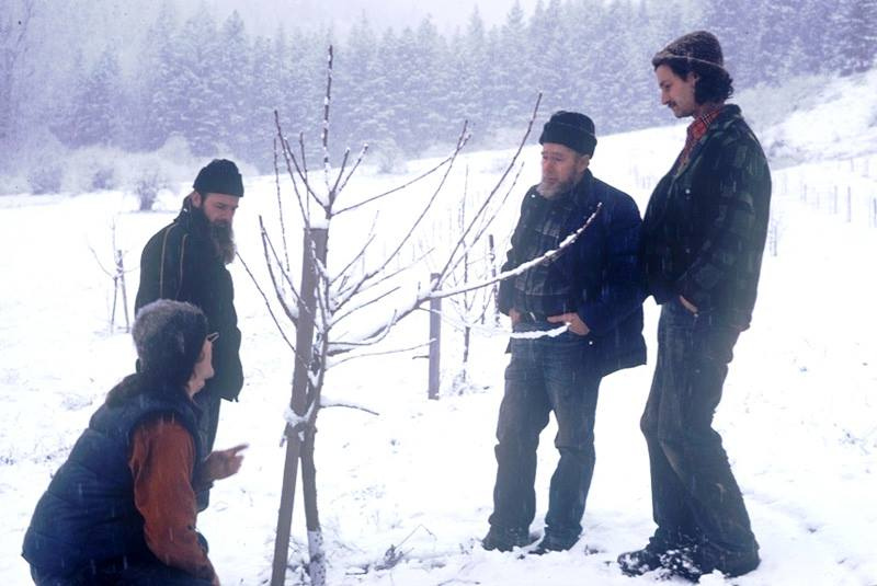 "Mark Musick visited Grant's farm in December, 1980, and took this photo of his recently-planted orchard. In the photo from left to right are Bob Elk, Michael ""Skeeter' Pilarski, Warren Taber, and Grant Gibbs (far right). This is the same orchard the Gibb's Farm apples come from today some 36 years later. Photo stolen from Washington Tilth."