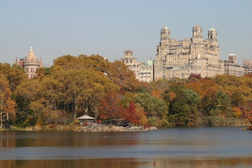 A view of one of the lakes in the Park, with some of the magnificent buildings on the Upper West Side in the background.
