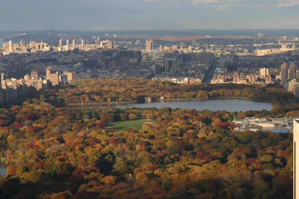 Central Park, in all of it's fall splendour