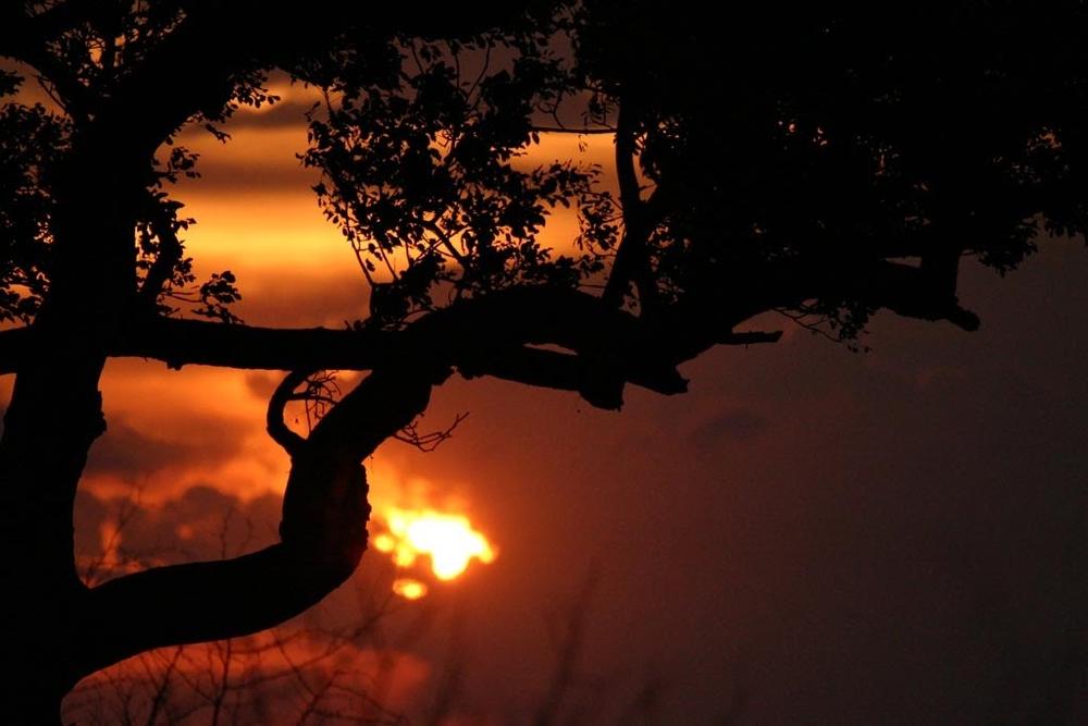 af_sunset.jpg
