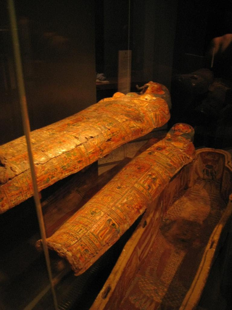 Mummies in the City Museum