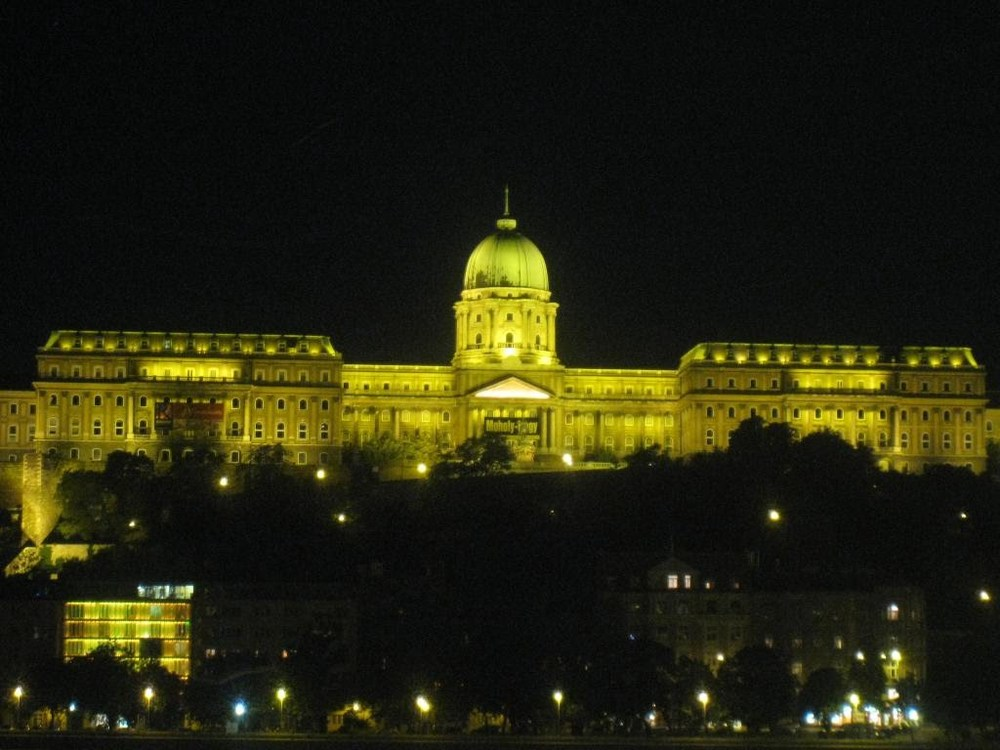 08Budapest_Castle_night.JPG
