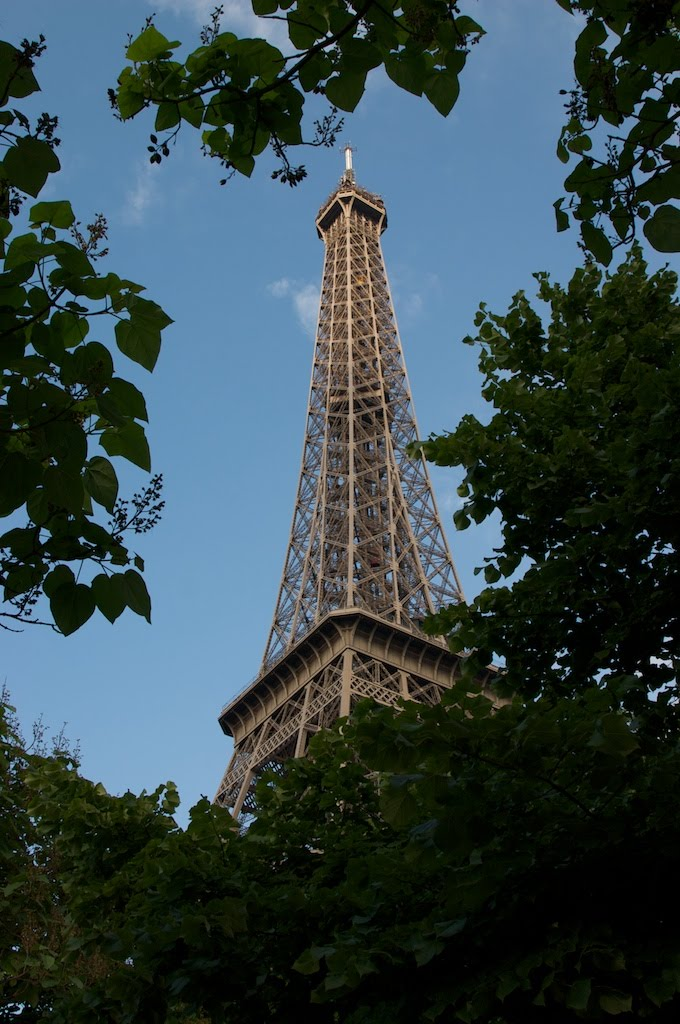 08Paris_effiel_tower.jpg