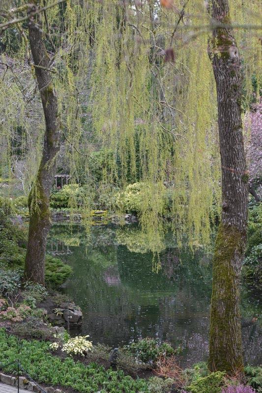 Buschart Gardens, fish pond. April 2006.