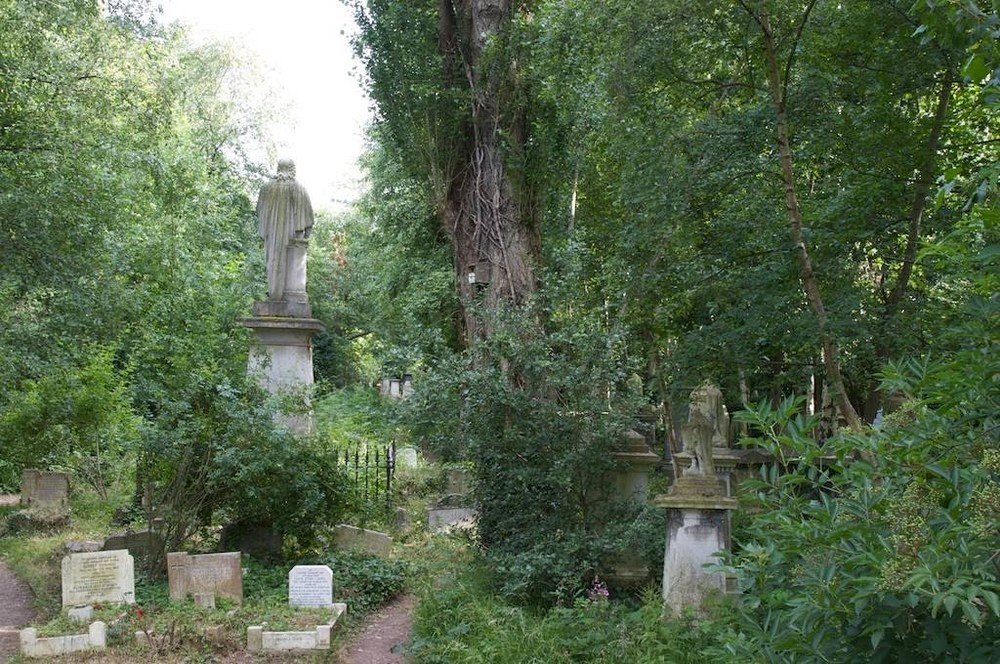 The overgrown fantasy-land of Abney Park Cemetery