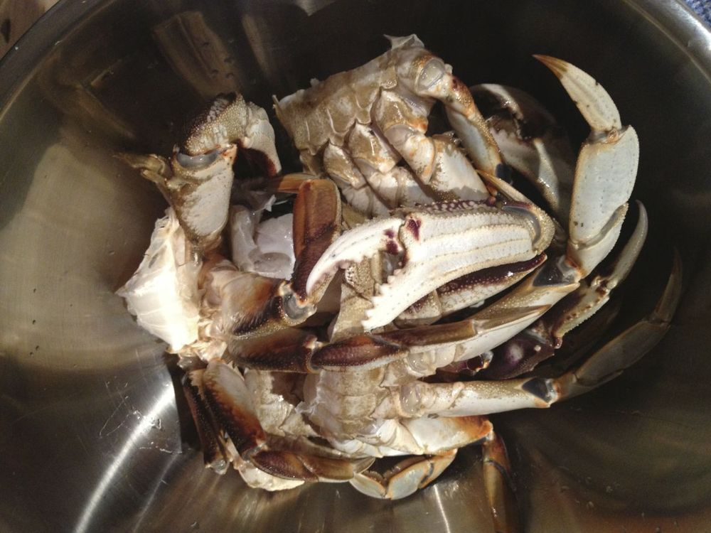 They put up a fight, but eventually we had a big pot of crab for dinner.