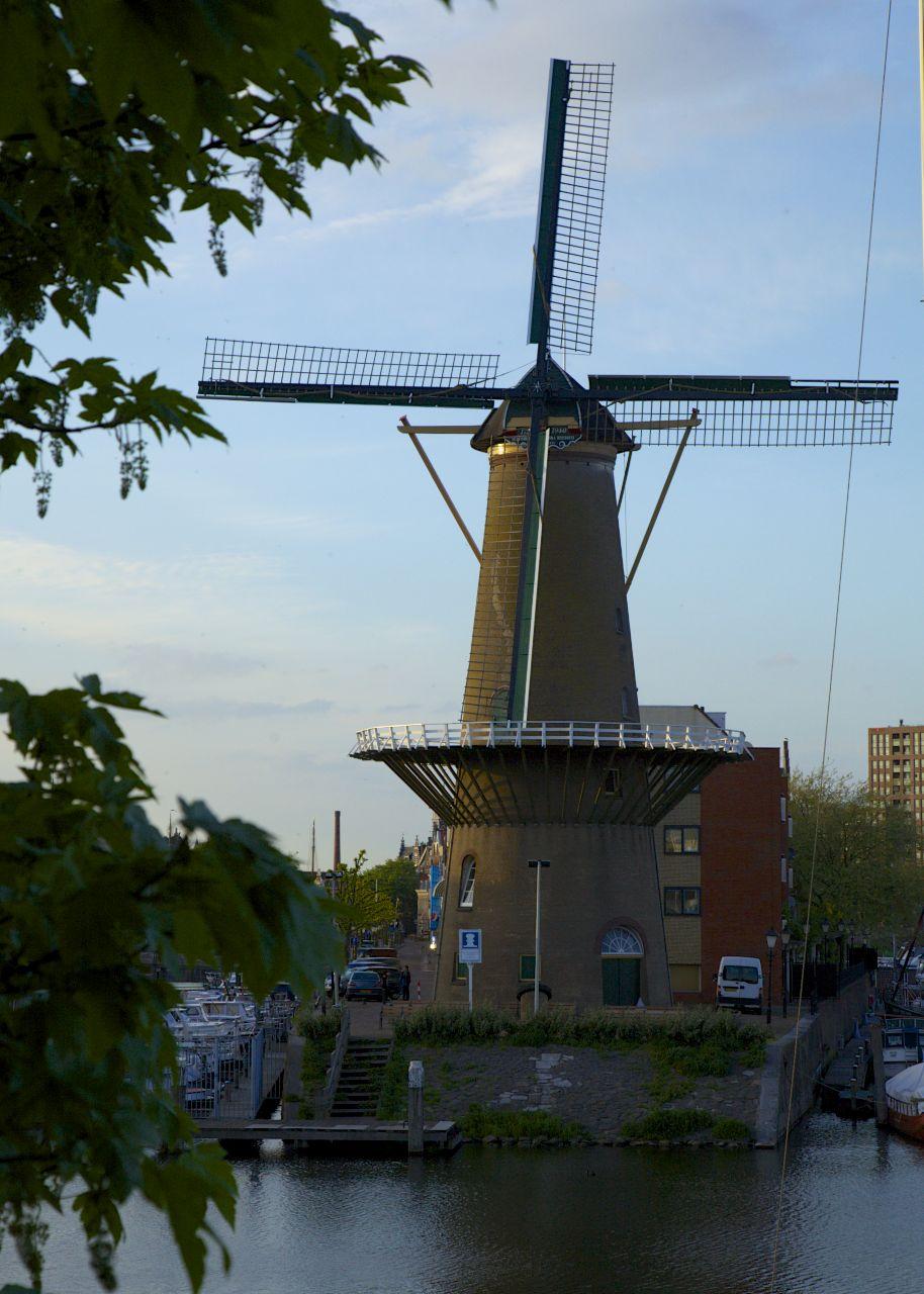 201305 Rotterdam 62.jpg