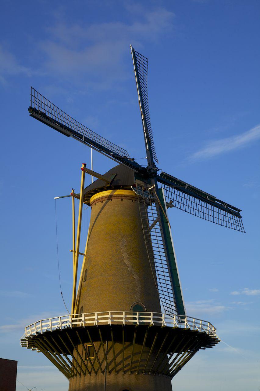 201305 Rotterdam 81.jpg