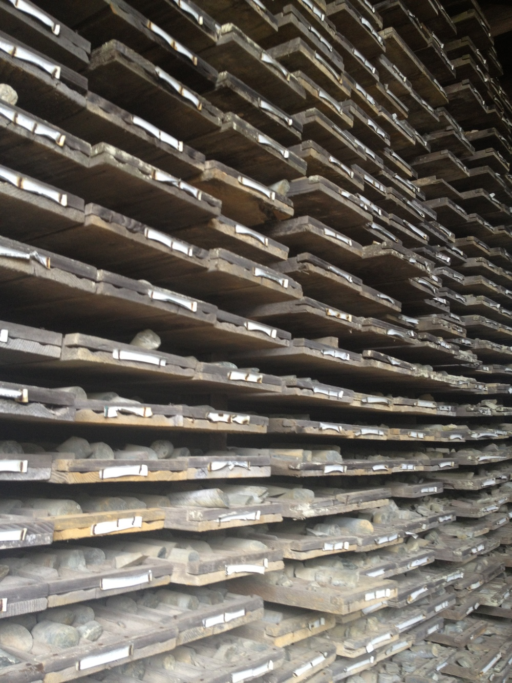 A shot of some of the cores in the core shed.