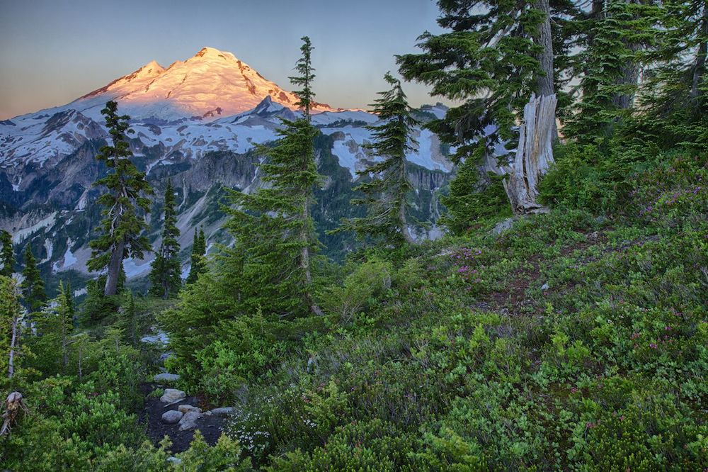 Mount_baker_sunrise_peak.jpg