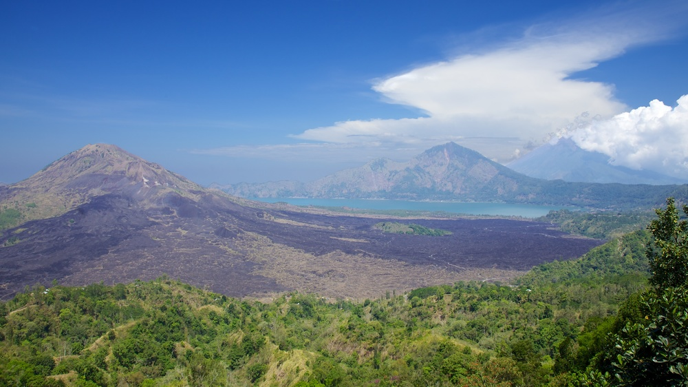 Bali  36257.jpg
