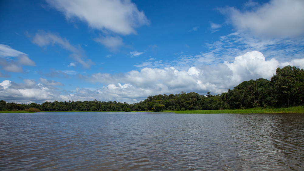 Even at only half it's size, the Rio Negro is a huge river. Very beautiful on a very nice day.
