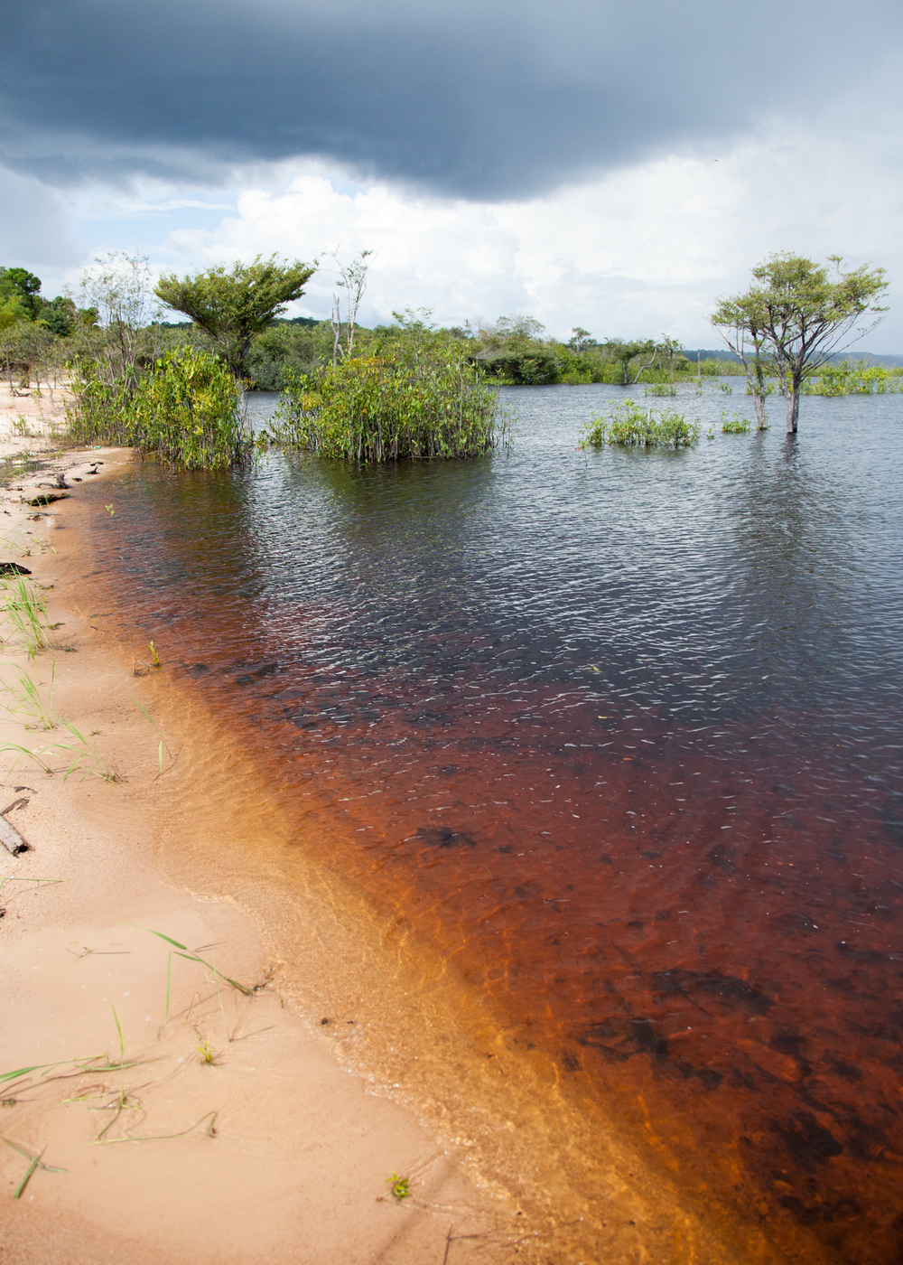 You can really see the colour of the Rio Negro, just outside the village. It looks like tea, more than river water. The colour comes from the tannins in the trees, that leach into the water.